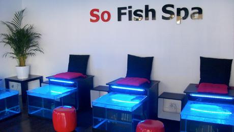 so-fish-spa